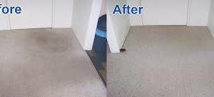 Photo #5: Zap Carpet Cleaning