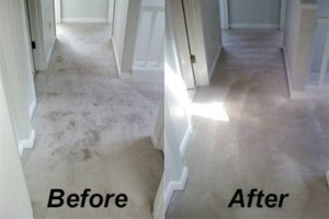 Photo #3: Zap Carpet Cleaning