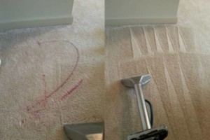 Photo #1: Zap Carpet Cleaning
