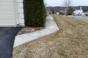 Photo #3: FRADA Landscaping & Hardscaping services