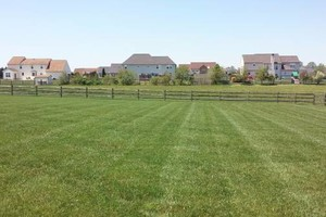 Photo #4: YARD PRO