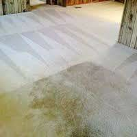 Photo #1: Fox Carpet Cleaning special $99 this weekend only