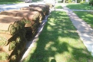 Photo #3: GLOBAL LANDSCAPING - LOT CLEARING.LOT CLEARING.DRAINAGE SYSTEMS...