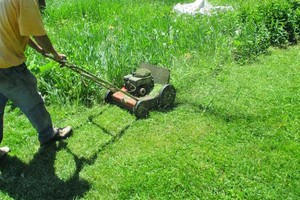 Photo #2: Amazing Service - Kings Lawn Care