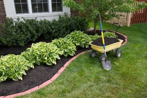 Photo #6: 1st Choice Lawn & Landscaping