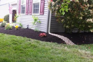 Photo #2: 1st Choice Lawn & Landscaping