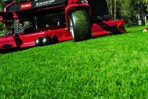 Photo #1: THE GRASS AUTHORITY- LAWN CARE