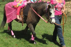 Photo #1: PRINCESS PONY PARTY or LITTLE BUCAROO PARTY