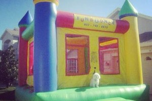 Photo #6: JUMPERS-TABLES-PARTY RENTALS! JU-COTTON CANDY...