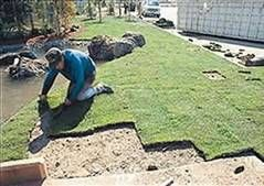 Photo #4: Sod -- Landscaping -- Storm Cleanup