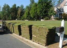 Photo #2: Sod -- Landscaping -- Storm Cleanup