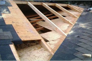 Photo #2: Roofing Tampa Area | 40+ yrs experience