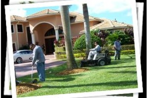 Photo #4: Express lawn service - LANDSCAPE DESIGN, SPRIKLER REPAIRS, TREE TRIMMING