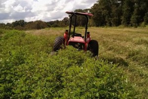 Photo #3: Tractor Work - Spread Grade Material. FREE QUOTE!