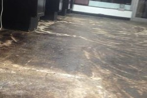 Photo #13: PROfessional Flooring removal services. Same day FREE estimates!