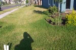 Photo #5: Green-Cutz Lawn Care LLC