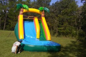 Photo #10: Water slides, bounce houses and much more! Lilants