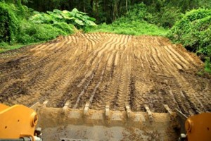 Photo #20: Grading, concrete removal, dirt work, etc