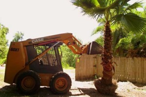 Photo #14: Grading, concrete removal, dirt work, etc