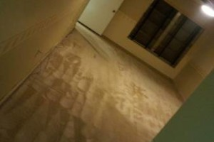 Photo #7: T-Bowe's Carpet Tile and Grout Cleaning
