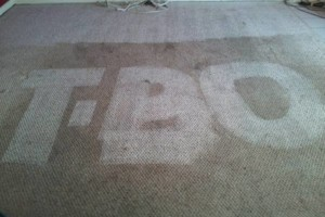 Photo #3: T-Bowe's Carpet Tile and Grout Cleaning