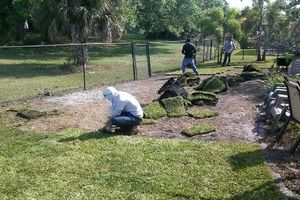 Photo #20: TEZNA LANDSCAPING & TREE TRIMMING SERVICES