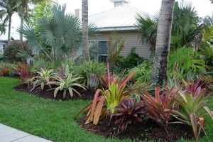 Photo #7: TEZNA LANDSCAPING & TREE TRIMMING SERVICES