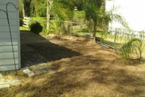Photo #14: PROFESSIONAL TREE SERVICE & PROPERTY MAINTENANCE