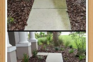 Photo #8: Roof Cleaning starting at $299. H2O POWER CLEAN LLC.