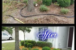 Photo #18: Commercial/Residential Lawn Care, Tree Service, Maintenance...