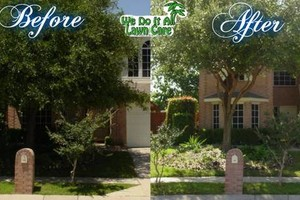 Photo #12: Commercial/Residential Lawn Care, Tree Service, Maintenance...