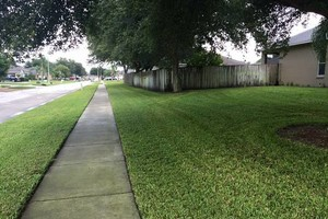 Photo #7: Commercial/Residential Lawn Care, Tree Service, Maintenance...