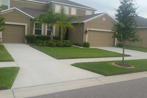 Photo #4: Commercial/Residential Lawn Care, Tree Service, Maintenance...