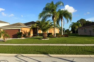 Photo #3: Commercial/Residential Lawn Care, Tree Service, Maintenance...