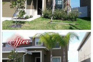Photo #2: Commercial/Residential Lawn Care, Tree Service, Maintenance...