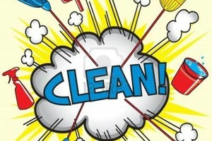 Photo #1: Cleaning/organization Services. Not Commercial Properties