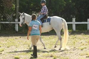 Photo #1: Horseback Riding Lessons/ Horse Training