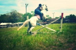Photo #4: Horseback Riding Lessons/ Horse Training