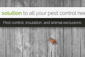 Photo #1: EcoSci Pest Solutions. Pest Control and Termite too