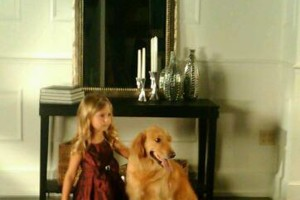 Photo #3: IN HOME DOG TRAINING - Home Sweet Home