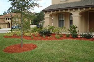 Photo #5: Chesney Landscaping & Property Maintence