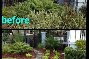 Photo #2: Safari Landscape And Horticultural Services Inc.