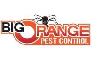 Photo #1: Big Orange Pest Control