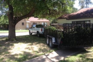 Photo #1: Tree and lawn service. We do it fast!