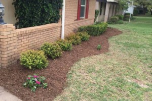 Photo #9: LANDSCAPING & MORE - PROFESSIONAL WORK, 'DIRT CHEAP' !!!