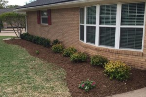 Photo #8: LANDSCAPING & MORE - PROFESSIONAL WORK, 'DIRT CHEAP' !!!