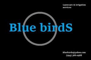 Photo #1: BLUE BIRDS Lawncare & irrigation