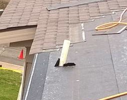 Photo #2: Country Boy Roofing and Construction. Roof Repairs & ReRoofs FAST