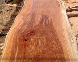 Photo #3: J & S Portable Sawmill