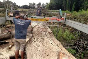 Photo #1: J & S Portable Sawmill